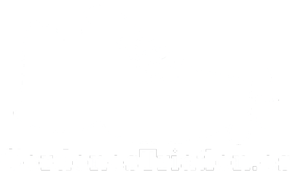 Cordones Triatlón CordonesTriatlon.es transparant blanco